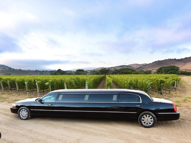 stretch limo in front of vineyards